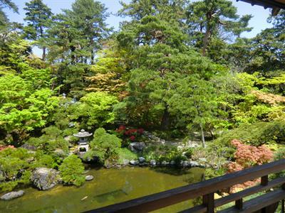 新潟の古民家の庭