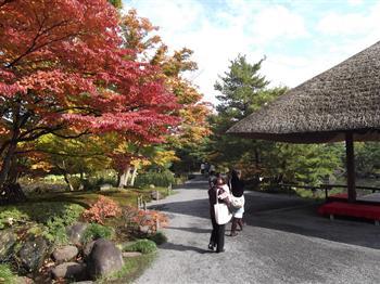 浄楽園の紅葉