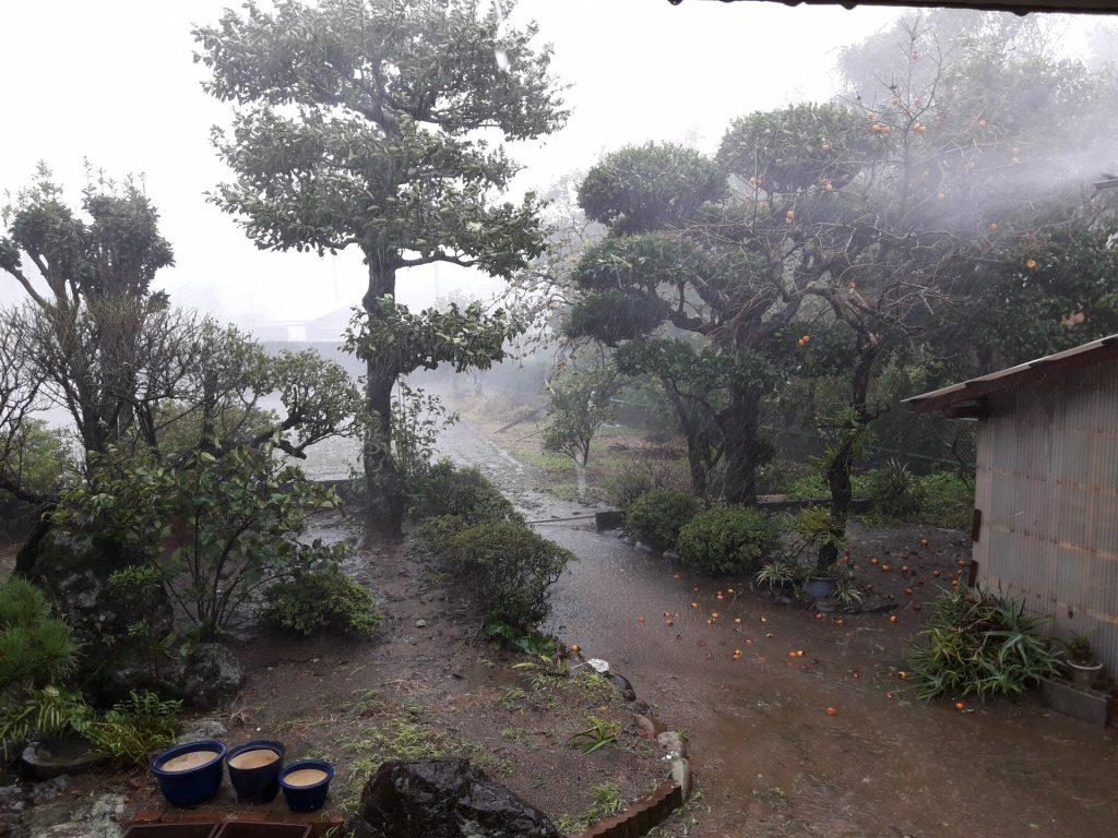 台風イメージ