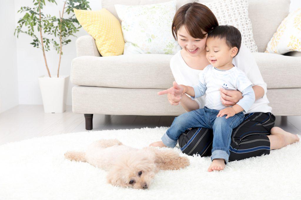「ペットが家族」の家づくり