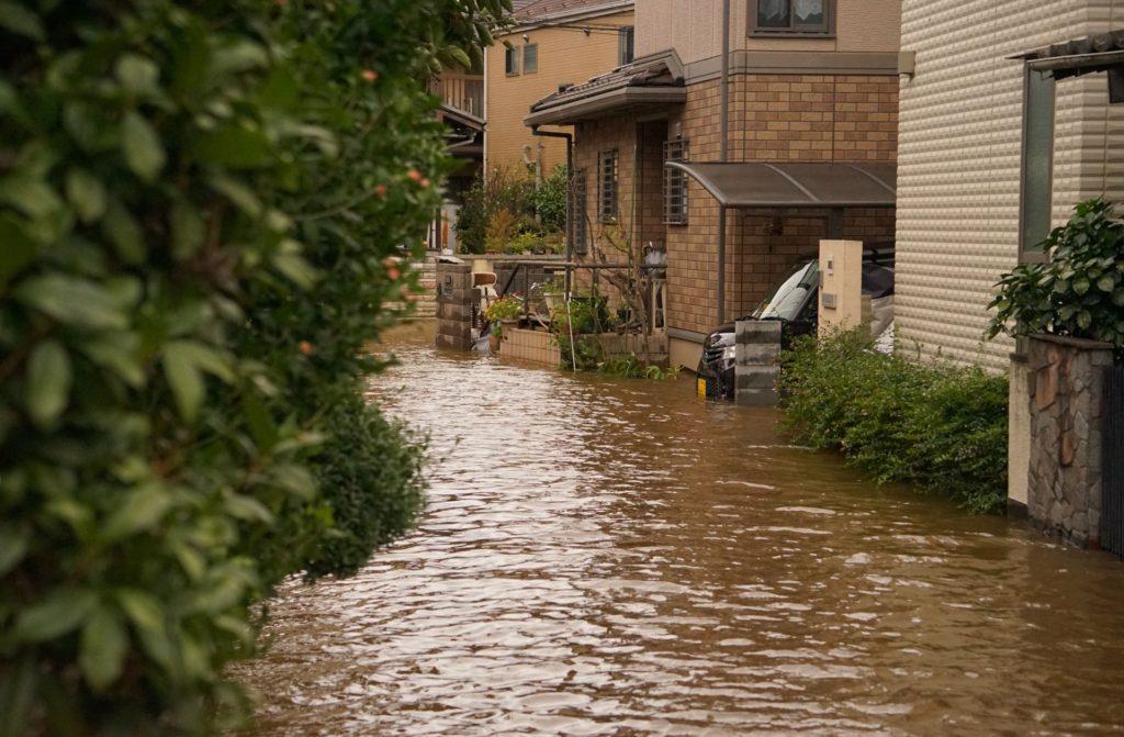 水害の様子